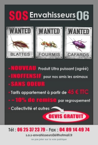 Traitement, Anti Cafards, Blattes, Fourmis à Nice, Menton, Cannes, Monaco et ses alentours...