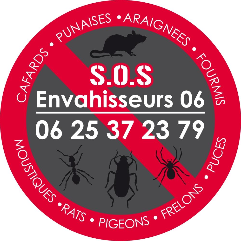 Comment se débarrasser des cafards, punaises de lits et rats à Nice ?